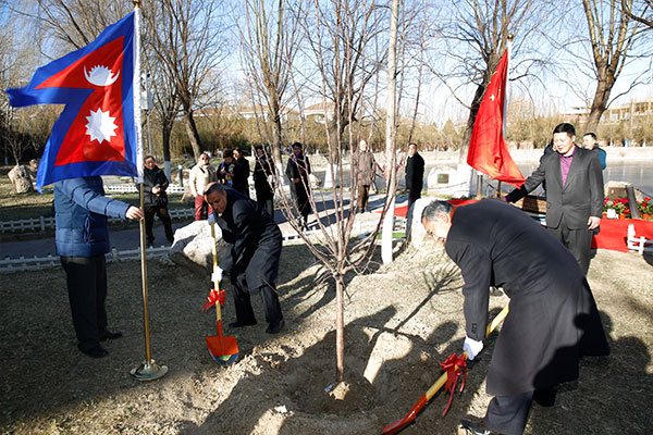 The Peace Stone Unveiling Ceremony of Nepal was Held in the Peace Garden Ambassador Village
