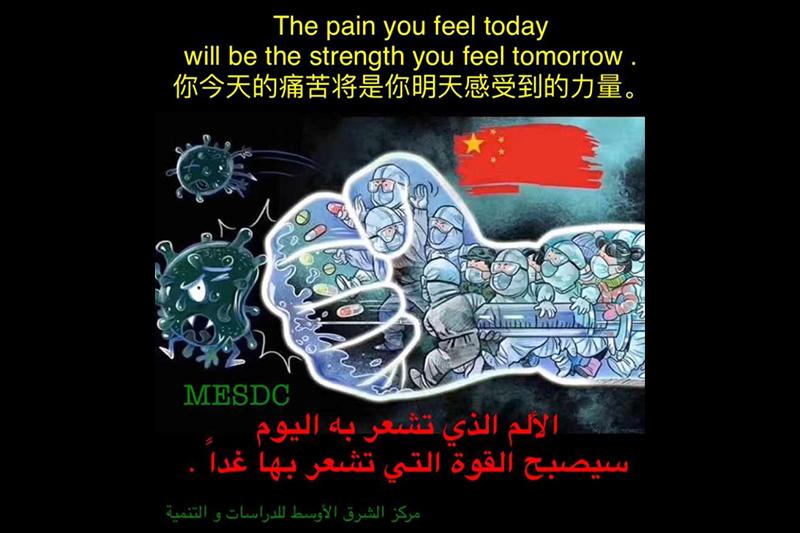 巴林驻华大使:巴林将与国际社会一起支持和协助中国早日结束疫情